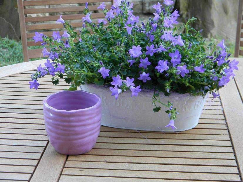 Vaso ceramica , dim. 10 x 10 cm